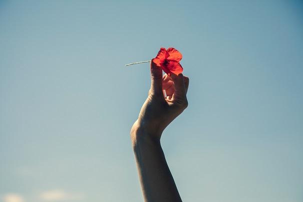 空にかざした赤い一輪の花